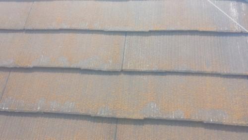 2014年4月26日 旭区鶴ヶ峰:洗浄前の屋根拡大