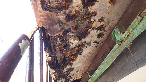 2013年11月20日 川崎市川崎区・鉄階段塗装:傷み2