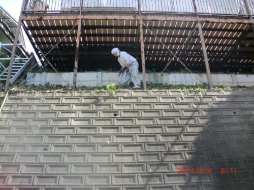 川崎市麻生区:テラス下草木刈り3