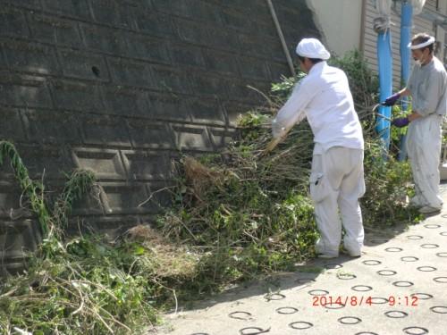 川崎市麻生区:草木を切る