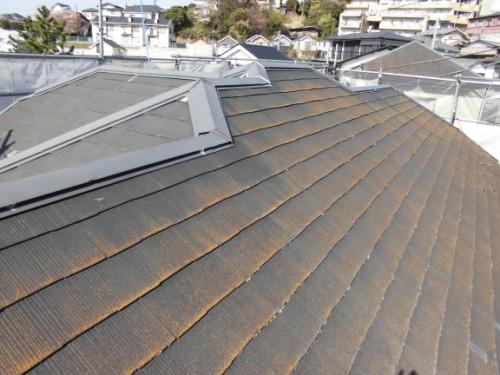 横浜市保土ヶ谷区:洗浄前の屋根