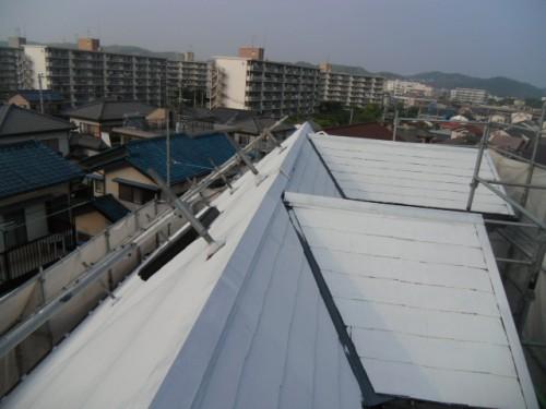 横須賀市久里浜:屋根中塗り1回目2