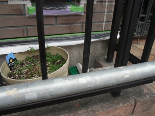 横浜市保土ヶ谷区:水切り養生