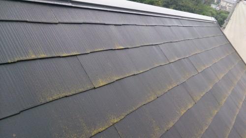 町田市本町田:コケの付着した屋根