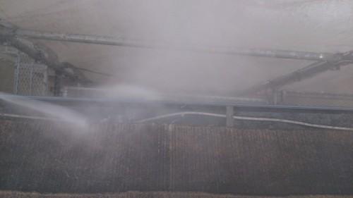 町田市本町田:雨樋の洗浄