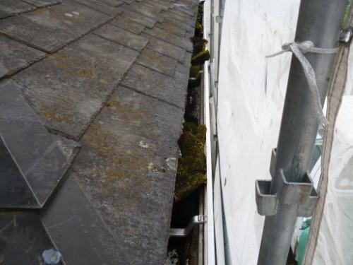横浜市旭区:苔、土の溜まった雨樋