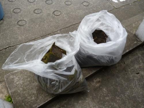横浜市旭区:樋に溜まっていた土と苔