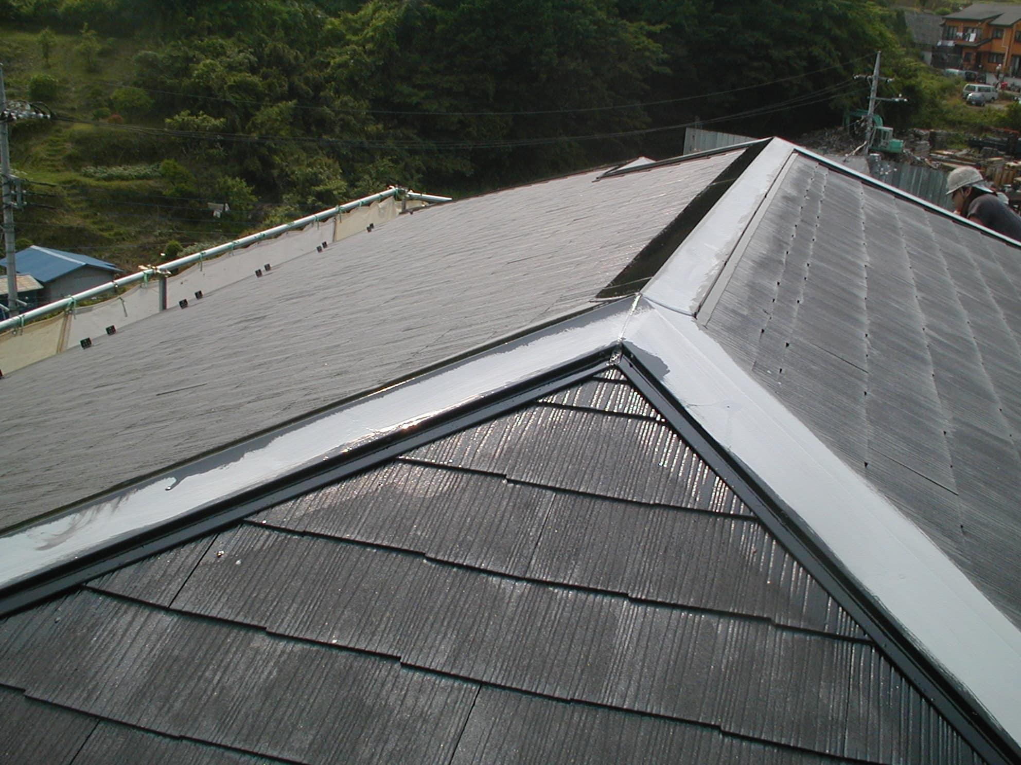スレート屋根のダメ込み