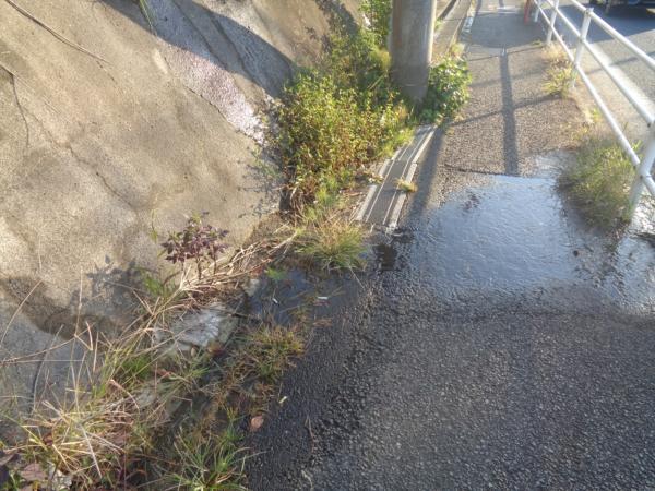 予測不能な水の侵入 雨漏り放置が引き起こす鉄骨階段崩落