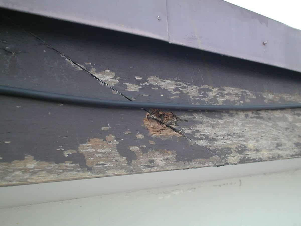 破風木部の腐食によってできた穴